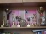 Спортни постижения на 9 ФЕГ
